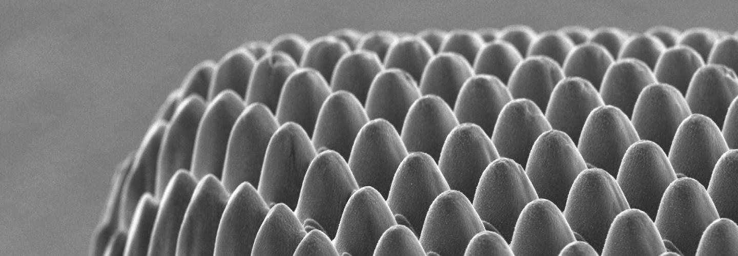 Micromachining - textured steel surface